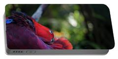 Miksang 4 Parrot Portable Battery Charger by Theresa Tahara