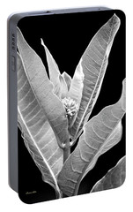 Portable Battery Charger featuring the photograph Milkweed Black And White by Christina Rollo
