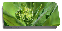 Portable Battery Charger featuring the photograph Milkweed Flower  by Lyle Crump