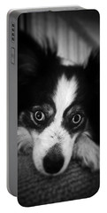 Millie Portable Battery Charger
