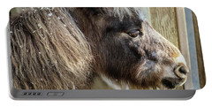 Miniature Horse Portable Battery Charger