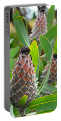 Mink Protea Flower Portable Battery Charger by Rebecca Margraf
