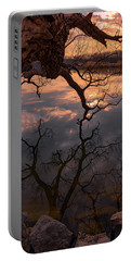 Mirrored Limb Portable Battery Charger