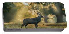 Portable Battery Charger featuring the photograph Misty Walk by Scott Carruthers