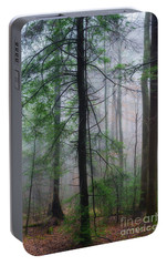 Portable Battery Charger featuring the photograph Misty Winter Forest by Thomas R Fletcher