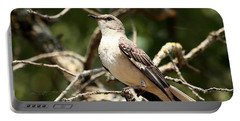Portable Battery Charger featuring the photograph Mockingbird  by Sheila Brown