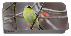 Portable Battery Charger featuring the photograph Molting Gold Finch Square by Bill Wakeley