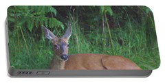 Mom Watching Her Fawn Portable Battery Charger