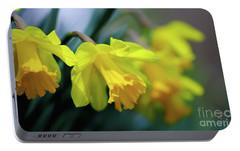 Portable Battery Charger featuring the photograph Mom's Daffs by Lois Bryan