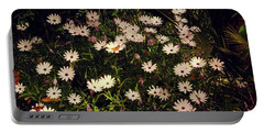 Portable Battery Charger featuring the photograph Monarchs And Daisies by Cassandra Buckley