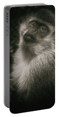 Monkey Portrait Portable Battery Charger
