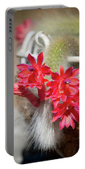 Monkey's Tail Cactus Flower Portable Battery Charger