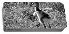 Monochrome Baby Sandhill Crane   Portable Battery Charger