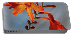 Montbretia 1 Portable Battery Charger