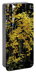 Moon Maple 2 Portable Battery Charger