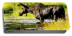 Moose At Jackson Hole Portable Battery Charger