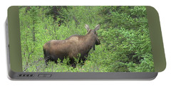 Moose Portable Battery Charger