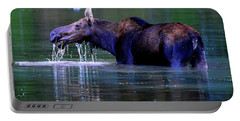 Moose In Swiftcurrent Lake, Glacier National Park Portable Battery Charger
