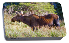 Portable Battery Charger featuring the photograph Moose In Waiting by Dawn Romine