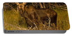 Moose Of Prong Pond Portable Battery Charger