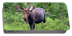 Portable Battery Charger featuring the photograph Moose Trail by Scott Mahon