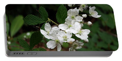 More Blackberry Flowers Portable Battery Charger by Cathy Harper
