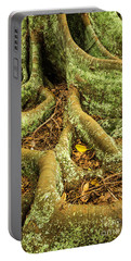 Portable Battery Charger featuring the photograph Moreton Bay Fig by Werner Padarin