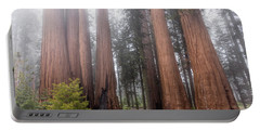 Portable Battery Charger featuring the photograph Morning Light In The Forest by Peggy Hughes