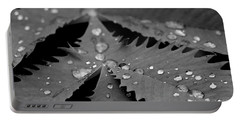 Portable Battery Charger featuring the photograph Morning Rain by John F Tsumas