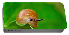 Morning Snail Portable Battery Charger