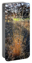 Morning Sun Backlights Fall Grasses In Glacial Park Portable Battery Charger