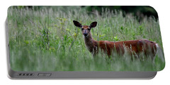 Morninng Deer Portable Battery Charger