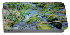 Mossy Blue Brook Portable Battery Charger