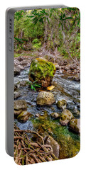 Portable Battery Charger featuring the photograph Mossy Boulder by Christopher Holmes