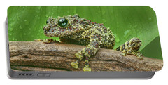 Portable Battery Charger featuring the photograph Mossy Frog by Nikolyn McDonald