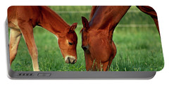 Mother And Foal 3377 H_2 Portable Battery Charger