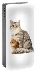 Mother Cat And Ginger Kitten Portable Battery Charger