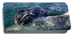 Mother Grey Whale And Baby Calf Portable Battery Charger