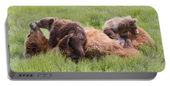 Mother Grizzly Suckling Twin Cubs Portable Battery Charger