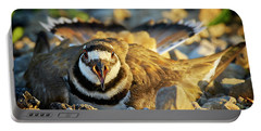 Mother Killdeer 1 Portable Battery Charger