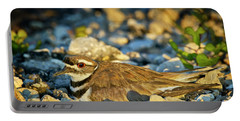 Mother Killdeer 2 Portable Battery Charger
