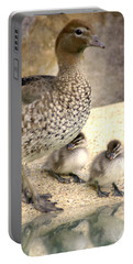 Mother Of Twins Portable Battery Charger
