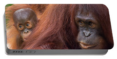 Portable Battery Charger featuring the photograph Mother Orangutan With Baby by John Black