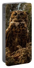 Mother Owl Posing Portable Battery Charger