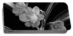 Mother's Clivia Lily Portable Battery Charger