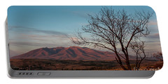 Mount Ara At Sunset With Dead Tree In Front, Armenia Portable Battery Charger