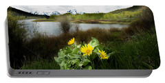 Mount Moran Spring Portable Battery Charger