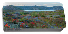 Mount St Helens Spirit Lake Fields Of Spring Wildflowers Portable Battery Charger by Mike Reid
