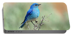 Mountain Bluebird Beauty Portable Battery Charger by Mike Dawson