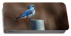 Mountain Bluebird Portable Battery Charger by Eric Nielsen